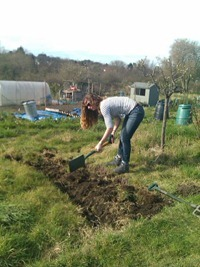 Gina at allotment