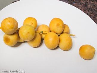 Fruit-1185