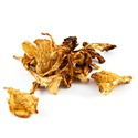 JC-dried-mushrooms-golden-girolles-chanterelles