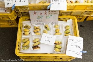 Japan2012-2395