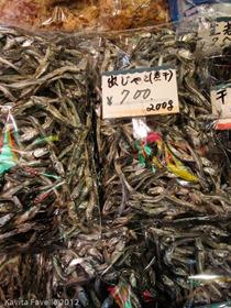 Japan2012-2558