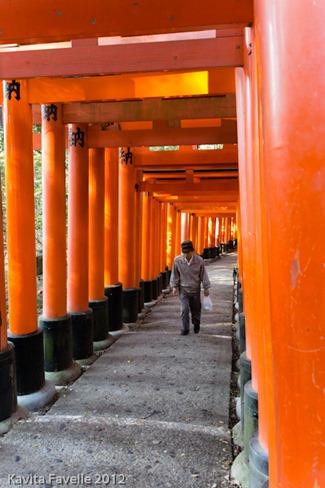 Japan2012-3195
