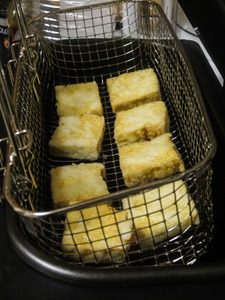 FriedTofu-4996