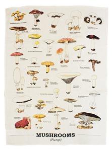 ecologie mushroom