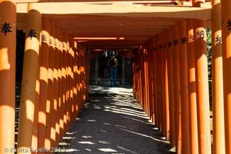 Japan2013-Suizenji Imo-5643