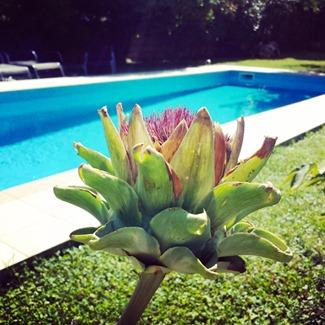 Croatia Instagram KaveyEats KFavelle (c)-100231