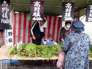 Toji-Temple-Market-Kyoto-Japan-(c)KavitaFavelle-2395