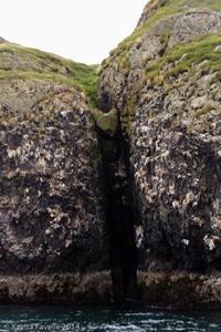 Viking-Sushi-Boat-Excursion-Stykkisholmur-Iceland-(c)KavitaFavelle-7381