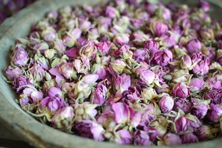 roses in morocco urvashi roe