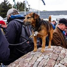 Islay2015 (c) MattGibson(Gothick)-23