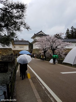 Sakura Season in Hikone Japan on Kavey Eats-132232