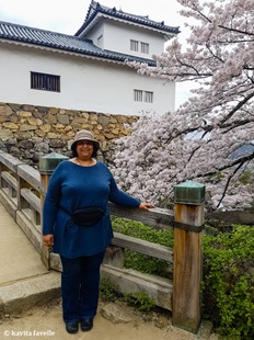Sakura Season in Hikone Japan on Kavey Eats-141312