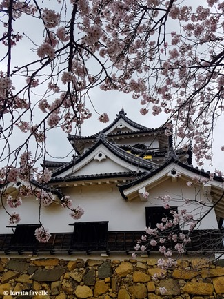 Sakura Season in Hikone Japan on Kavey Eats-143743