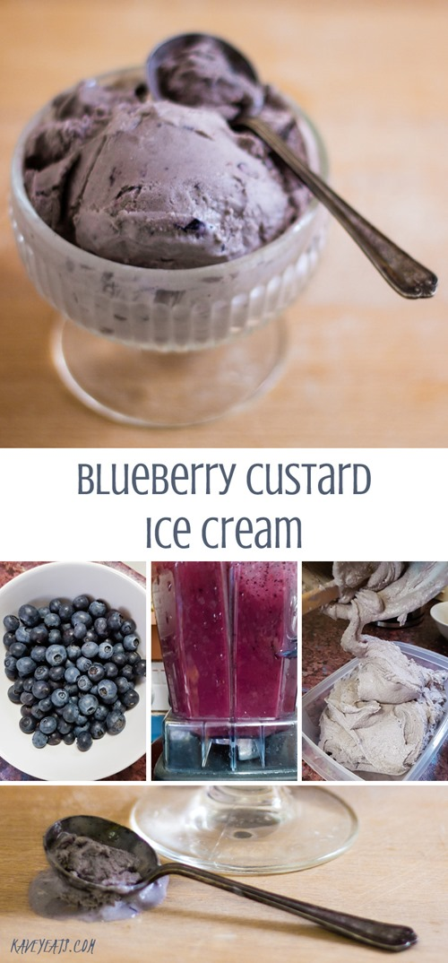 Blueberry Custard Ice Cream on Kavey Eats (tallpin)