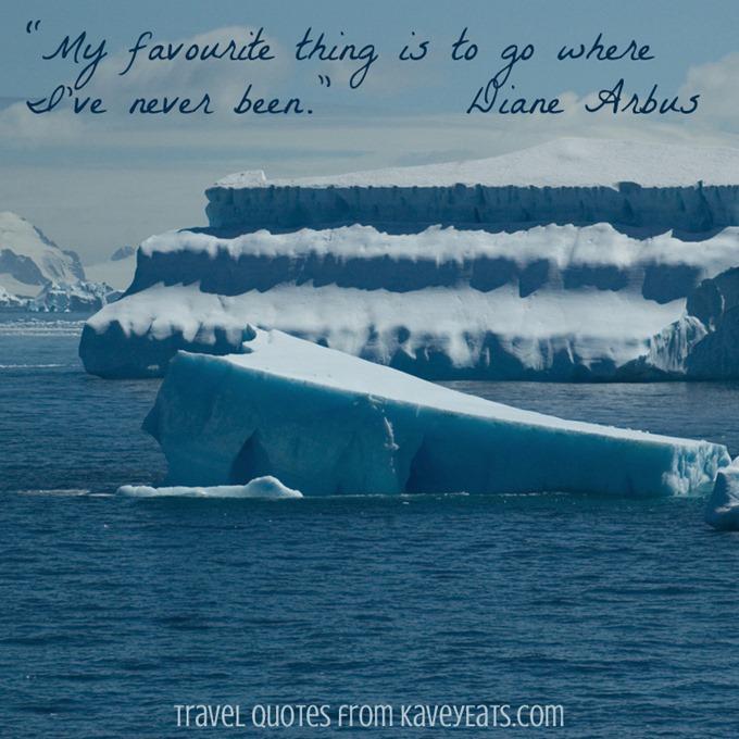 (c) Kavita Favelle - Diane Arbus - Antarctica