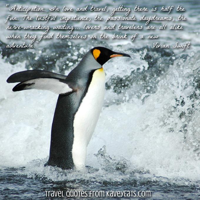 (c) Kavita Favelle - Vivian Swift - Antarctica