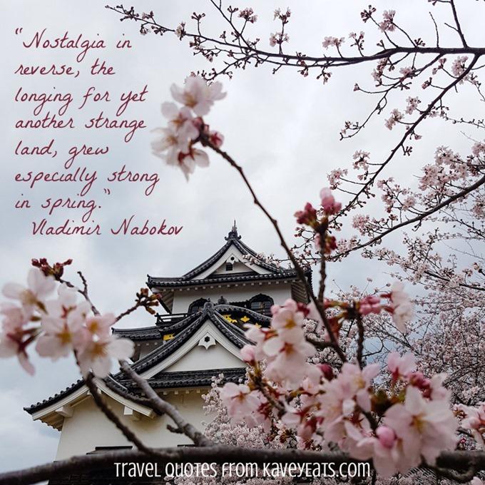 (c) Kavita Favelle - Vladimir Nabokov - Hikone Japan