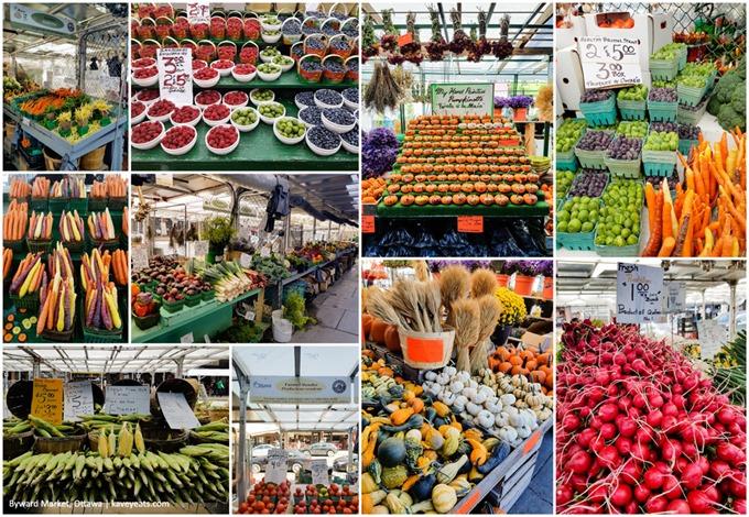 Byward Market Fruit and Veg Collage - Ottawa 2016