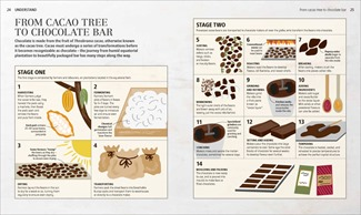 From cacao tree to chocolate bar