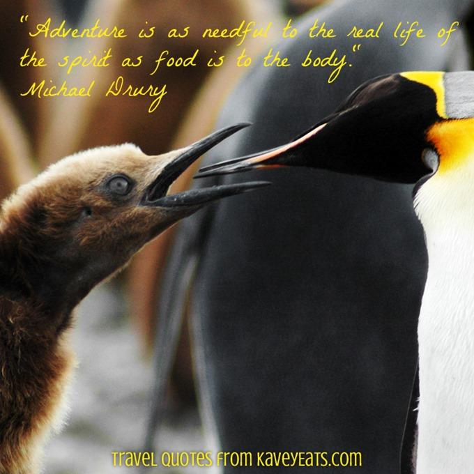 (c) Kavita Favelle - Michael Drury - Antarctica