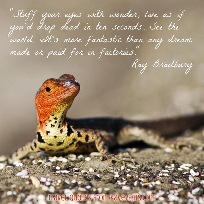 (c) Kavita Favelle - Ray Bradbury - Galapagos