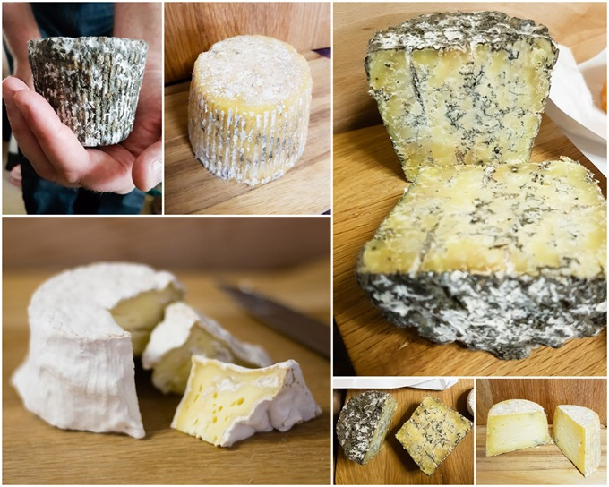 Wildes Cheese collage 2