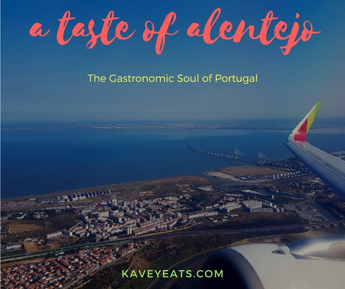 A taste of alentejo (TAPPortugal)