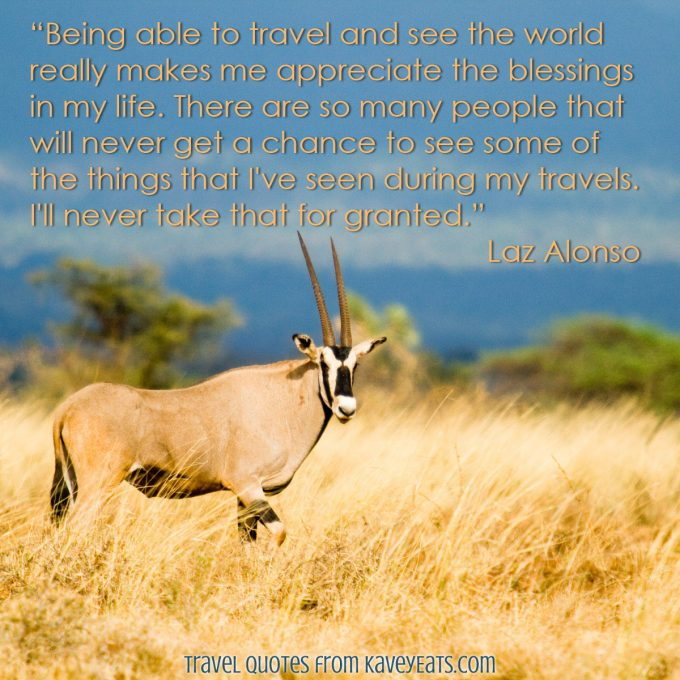 Oryx in the golden grass, Namibia
