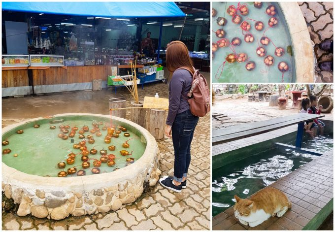 Chiang Mai Hot Springs