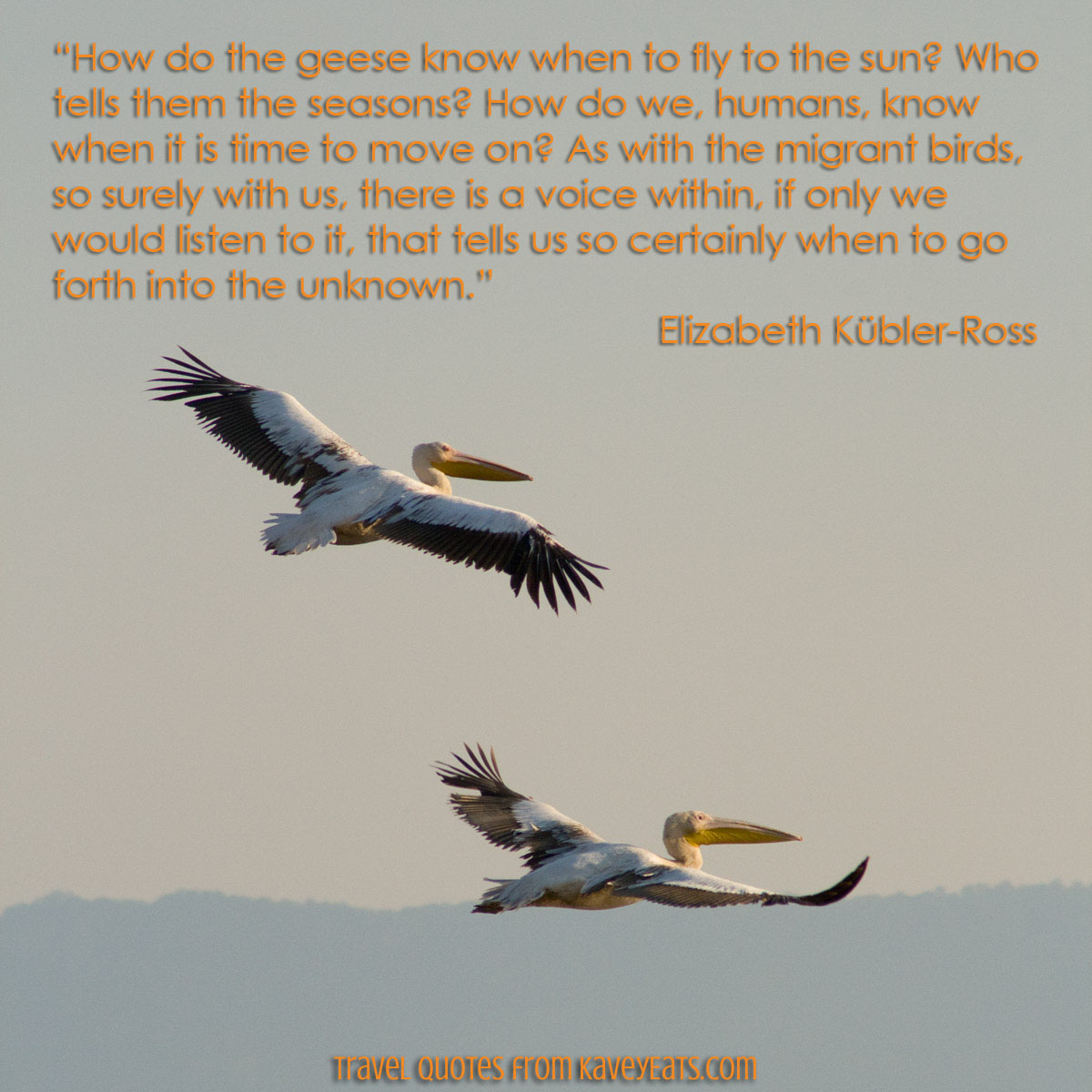 """How do the geese know when to fly to the sun? Who tells them the seasons? How do we, humans, know when it is time to move on? As with the migrant birds, so surely with us, there is a voice within, if only we would listen to it, that tells us so certainly when to go forth into the unknown."" Elizabeth Kübler-Ross"