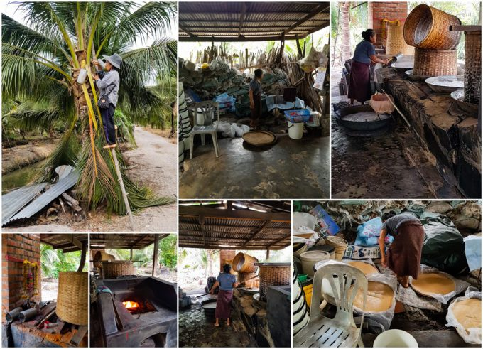 Tha Kha Coconut Palm Sugar Farm near Bangkok Thailand