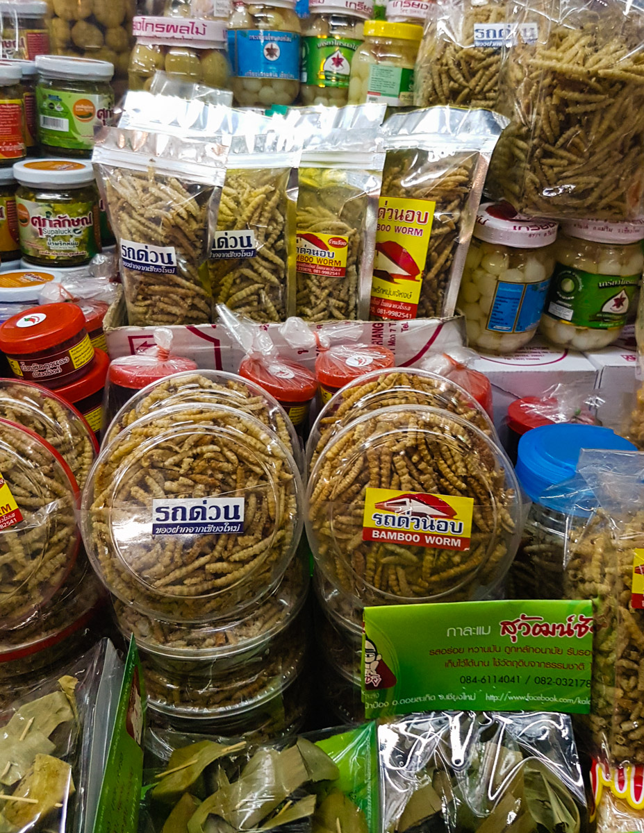 Insect Snacks Bamboo Worms The Best Souvenirs To In Thailand