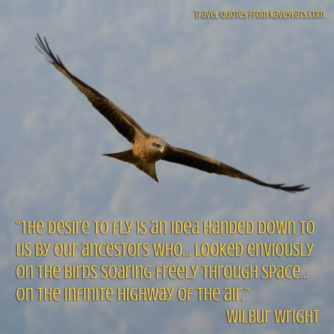 """The desire to fly is an idea handed down to us by our ancestors who... looked enviously on the birds soaring freely through space... on the infinite highway of the air."" Wilbur Wright"