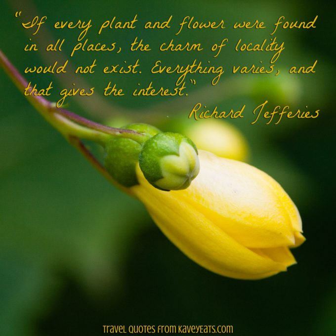 """If every plant and flower were found in all places, the charm of locality would not exist. Everything varies, and that gives the interest."" Richard Jefferies"
