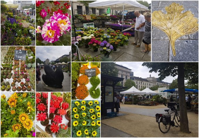 Kouter Sunday Flower Market - All-In-One Guide to Visiting Ghent, Belgium on Kavev Eats