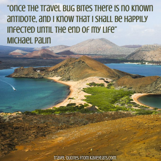 """Once the travel bug bites there is no known antidote, and I know that I shall be happily infected until the end of my life"" Michael Palin"