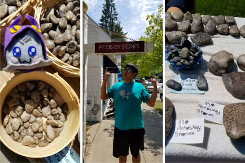 Petoskey Stones - The Best Souvenirs to Buy in the USA