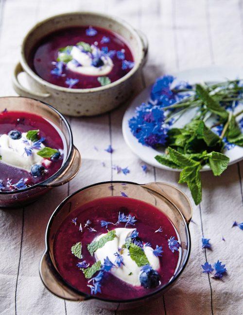 Summer Blueberry Soup